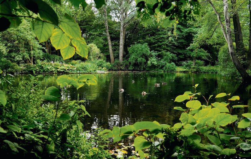 Park von Peter Joseph Lenné_Berlin