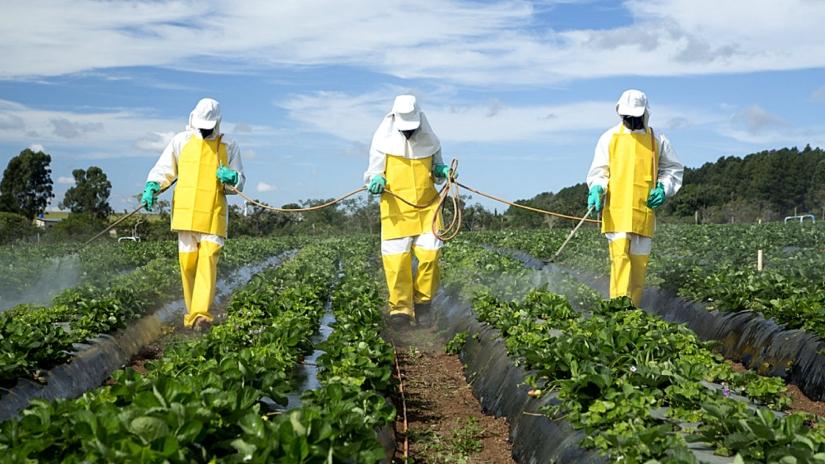 dephy-pesticides-reduire-moitie-2025-agriculteurs-une